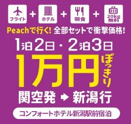 関西新潟CPN